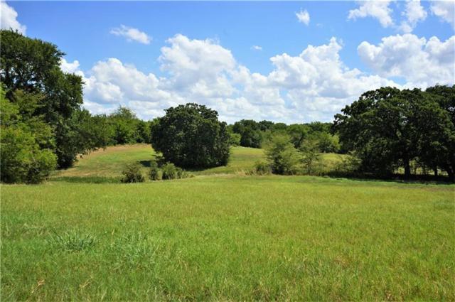0 Fm Road 1391, Kemp, TX 75143 (MLS #13950261) :: Steve Grant Real Estate