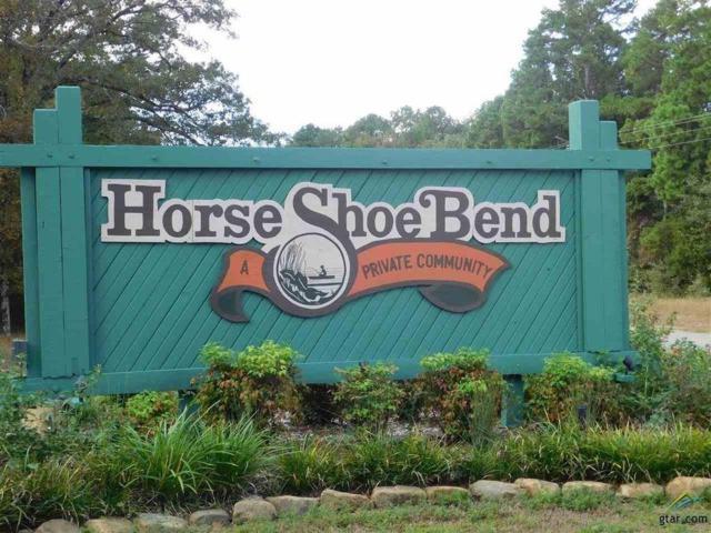 tbd County Road 4555, Winnsboro, TX 75494 (MLS #13950515) :: Baldree Home Team