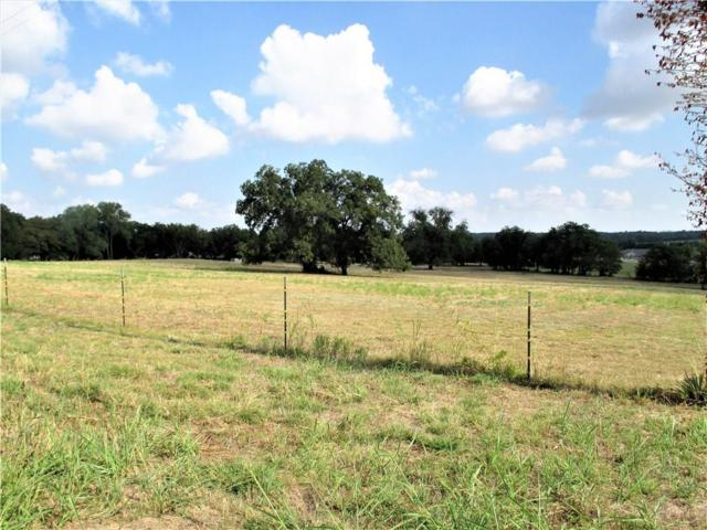 0 Ih-20 Road, Willow Park, TX 76087 (MLS #13951233) :: Robinson Clay Team