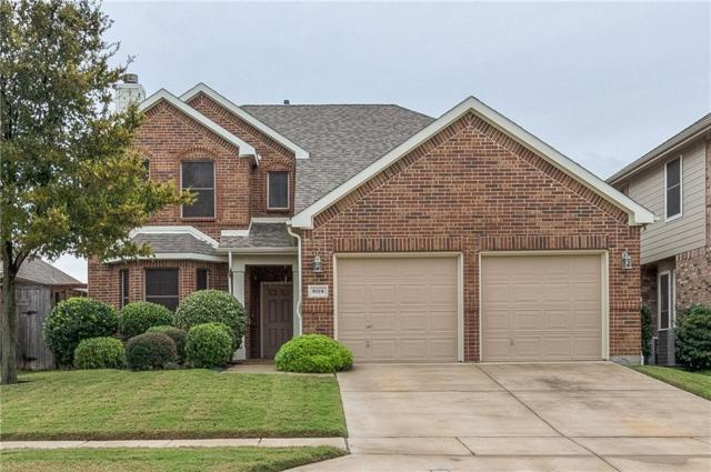 804 Lake Hollow Drive, Little Elm, TX 75068 (MLS #13952867) :: RE/MAX Performance Group