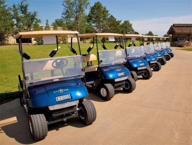 391 Palmilla Drive, Gordonville, TX 76245 (MLS #13952907) :: North Texas Team | RE/MAX Lifestyle Property