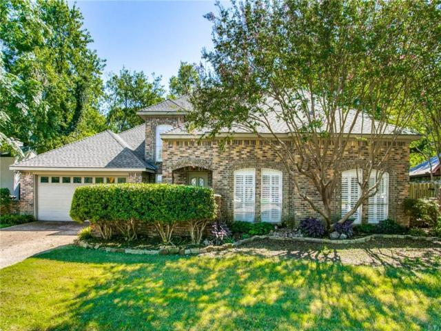 1504 Idyllwild Drive, Plano, TX 75075 (MLS #13952950) :: The Rhodes Team