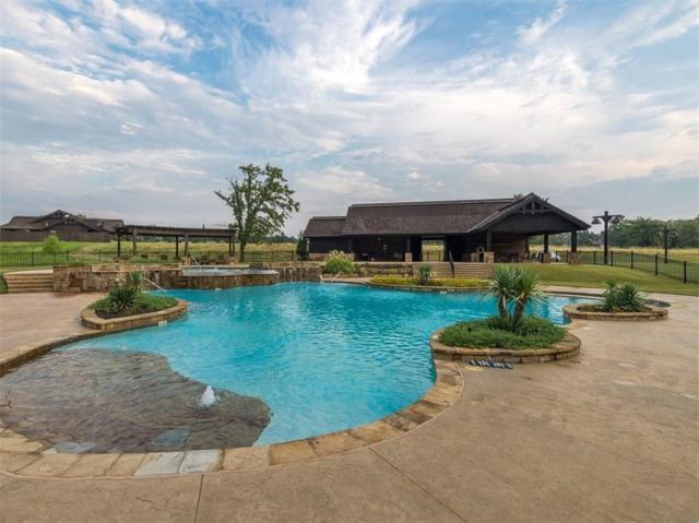 200 Palisades Circle, Gordonville, TX 76245 (MLS #13952960) :: The Heyl Group at Keller Williams
