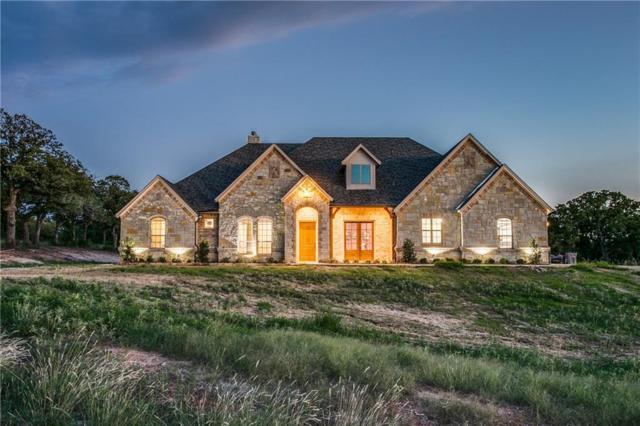 161 Private Road 4590, Boyd, TX 76023 (MLS #13952967) :: The Rhodes Team