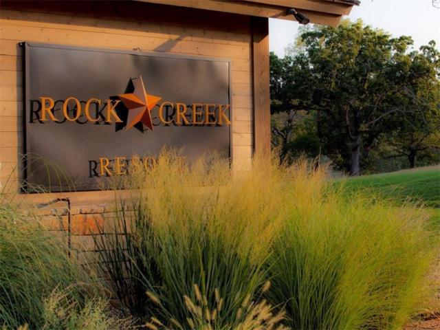 46 Roaring Fork Circle, Gordonville, TX 76245 (MLS #13952986) :: The Heyl Group at Keller Williams