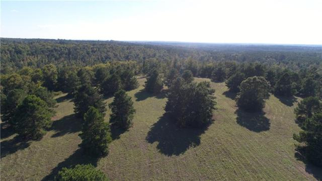 1820 An County Road 156, Palestine, TX 75801 (MLS #13953009) :: Steve Grant Real Estate