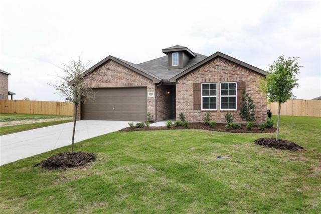 8060 Privet Street, Forney, TX 75126 (MLS #13953074) :: Robbins Real Estate Group