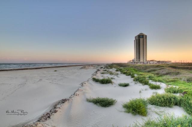 801 E Beach Drive Bc0512, Galveston, TX 77550 (MLS #13953307) :: Baldree Home Team