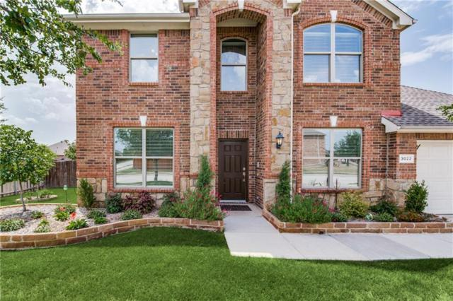 3022 Delray Court, Little Elm, TX 75068 (MLS #13953750) :: RE/MAX Performance Group