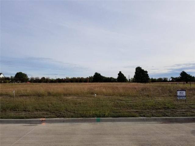 328 Dominion Place, Heath, TX 75032 (MLS #13954052) :: RE/MAX Landmark