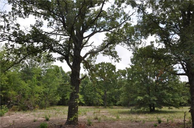 TBD Cr 4759 Road, Sulphur Springs, TX 75482 (MLS #13955019) :: The Hornburg Real Estate Group