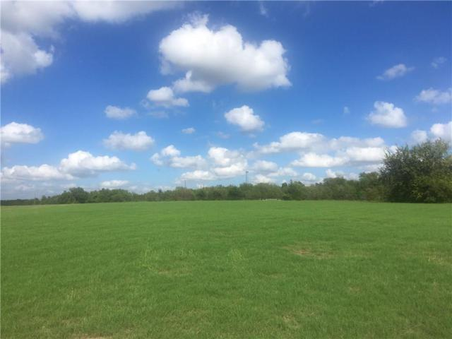 1220 Willow Lane, Farmersville, TX 75442 (MLS #13955177) :: The Mitchell Group