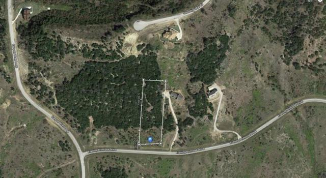 Lot255 Evening Primrose, Possum Kingdom Lake, TX 76449 (MLS #13955290) :: The Heyl Group at Keller Williams