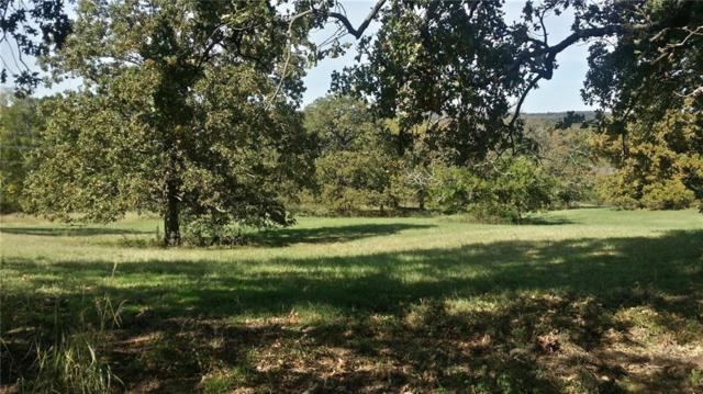 Lt 248 Overlook Point, Athens, TX 75752 (MLS #13955961) :: The Heyl Group at Keller Williams