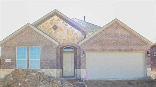 10916 Blaze Street, Aubrey, TX 76227 (MLS #13956259) :: The Real Estate Station