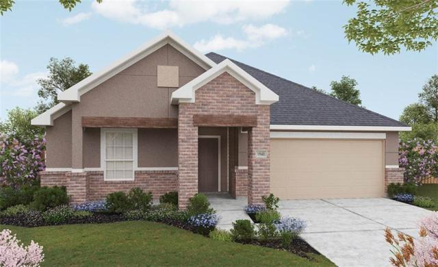 1556 Wyler Drive, Forney, TX 75126 (MLS #13956704) :: Robbins Real Estate Group
