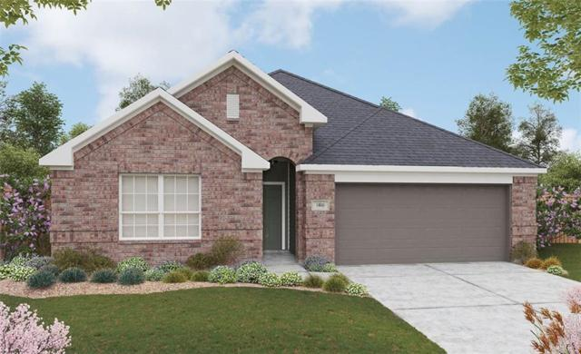 1552 Wyler Drive, Forney, TX 75126 (MLS #13956750) :: Robbins Real Estate Group