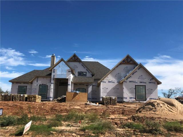 140 Lucky Ridge Lane, Springtown, TX 76023 (MLS #13957121) :: Robinson Clay Team