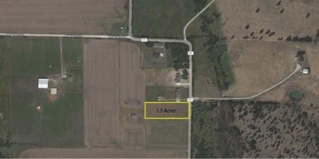 TBD County Road 551, Farmersville, TX 75442 (MLS #13957582) :: Kimberly Davis & Associates