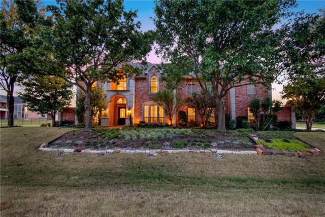 441 Palomino Way, Fairview, TX 75069 (MLS #13957747) :: RE/MAX Town & Country