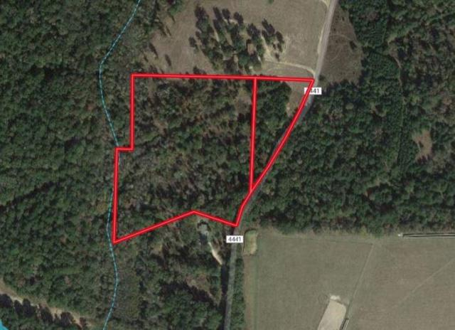00 An County Road 4441, Neches, TX 75779 (MLS #13958019) :: Robbins Real Estate Group