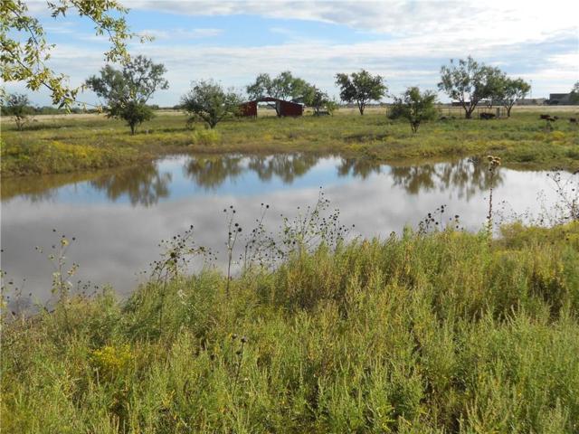 610 County Road 337, Tuscola, TX 79562 (MLS #13958214) :: The Heyl Group at Keller Williams