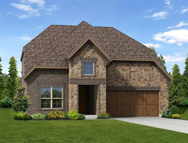 1453 Coneflower Drive, Frisco, TX 75033 (MLS #13958238) :: Robinson Clay Team