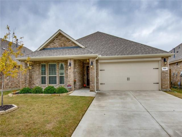 928 Lake Woodland Drive, Little Elm, TX 75068 (MLS #13958242) :: RE/MAX Town & Country