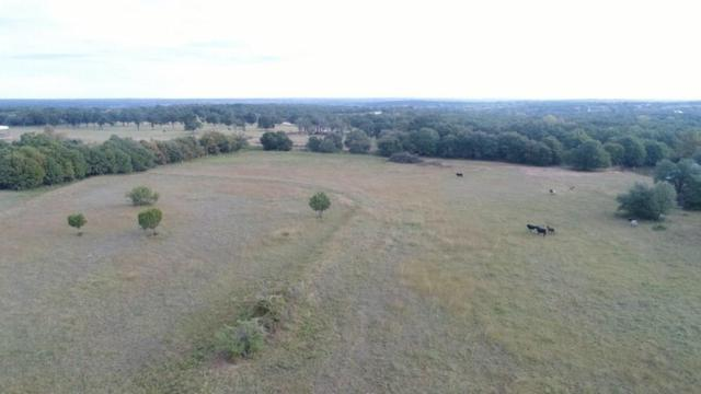 TBD County Road 714, Stephenville, TX 76401 (MLS #13958502) :: The Heyl Group at Keller Williams