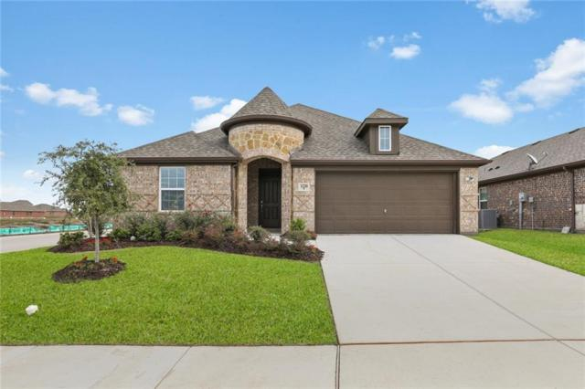 1220 Templin Avenue, Forney, TX 75126 (MLS #13958514) :: The Real Estate Station