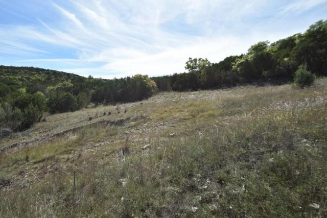 TBD Anchor, Bluff Dale, TX 76433 (MLS #13958928) :: RE/MAX Town & Country
