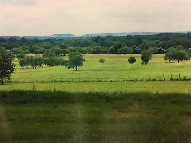 56 County Rd 2028, Glen Rose, TX 76043 (MLS #13960145) :: Potts Realty Group