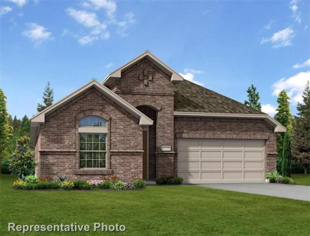 1104 Lake Cypress Lane, Little Elm, TX 75068 (MLS #13960388) :: RE/MAX Town & Country