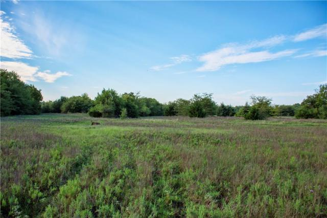 Tract 3 CR 1110, Farmersville, TX 75442 (MLS #13960724) :: The Mitchell Group