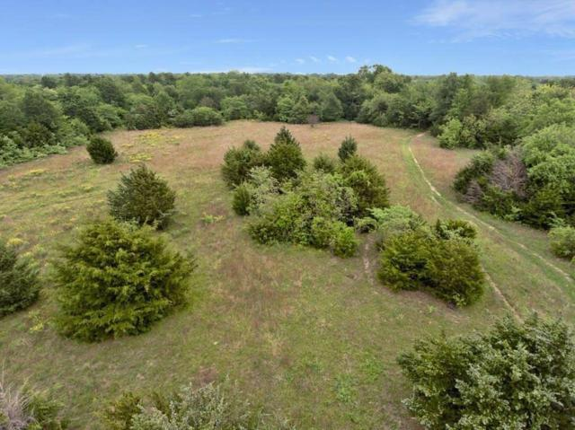 Tract 5 CR 1110, Farmersville, TX 75442 (MLS #13960734) :: The Mitchell Group
