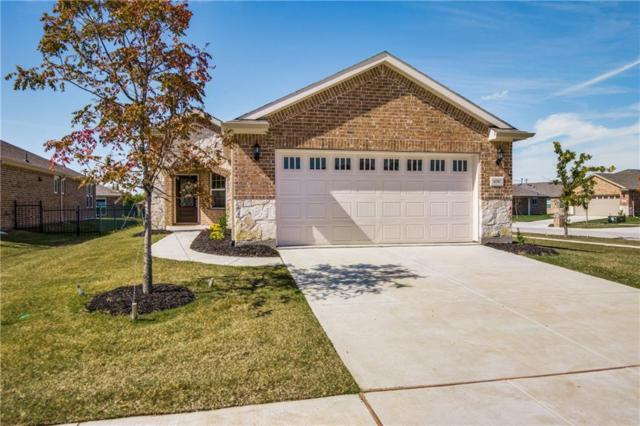 6787 Trout Lane, Frisco, TX 75036 (MLS #13961012) :: The Real Estate Station