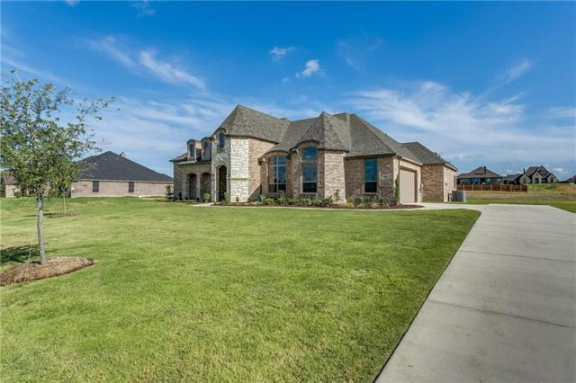 209 Denali Way, Waxahachie, TX 75167 (MLS #13961251) :: RE/MAX Town & Country