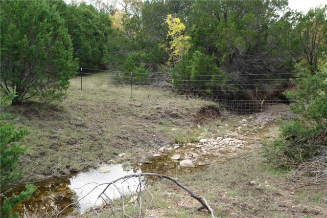 81 Cr 412, Goldthwaite, TX 76844 (MLS #13961284) :: Robbins Real Estate Group