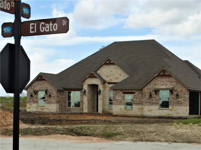 600 El Gato Drive, Godley, TX 76044 (MLS #13961419) :: The Heyl Group at Keller Williams