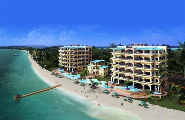 16.5M Main Road - Maya Beach B, Belize, TX 99999 (MLS #13961729) :: Van Poole Properties Group