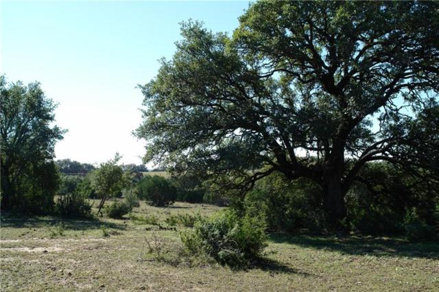 TBD Cr 402, Goldthwaite, TX 76844 (MLS #13961993) :: Robbins Real Estate Group