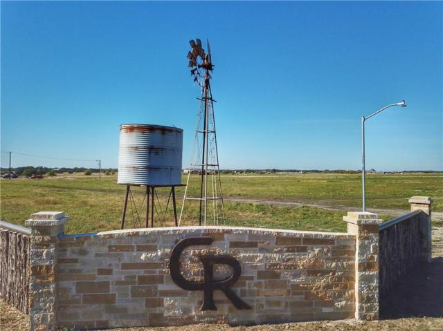 2011 Perkins Lane, Weatherford, TX 76088 (MLS #13962233) :: The Mitchell Group