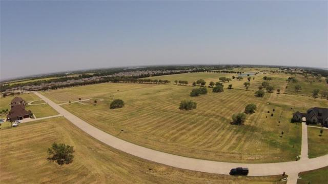 Oak Point, TX 75068 :: The Heyl Group at Keller Williams