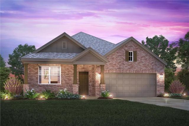800 Bluebird Way, Celina, TX 75009 (MLS #13963967) :: Real Estate By Design