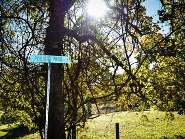 141 Possum Pass, Weatherford, TX 76085 (MLS #13966626) :: Magnolia Realty