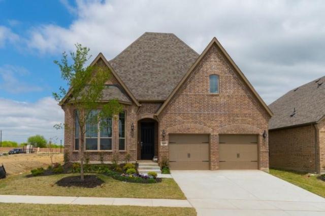 6008 Bellflower Drive, Mckinney, TX 75071 (MLS #13967565) :: RE/MAX Town & Country