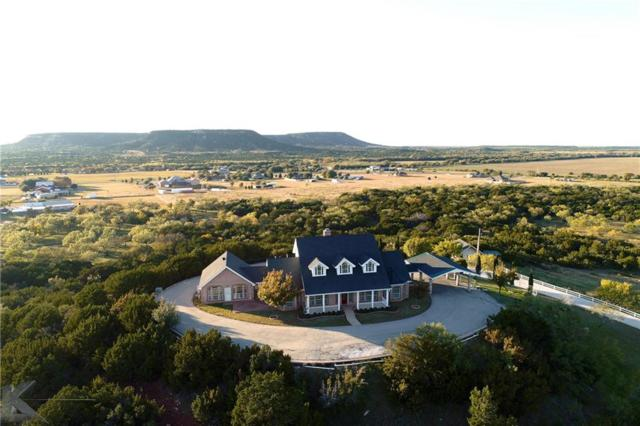 214 County Road 693, Buffalo Gap, TX 79508 (MLS #13967881) :: The Tonya Harbin Team
