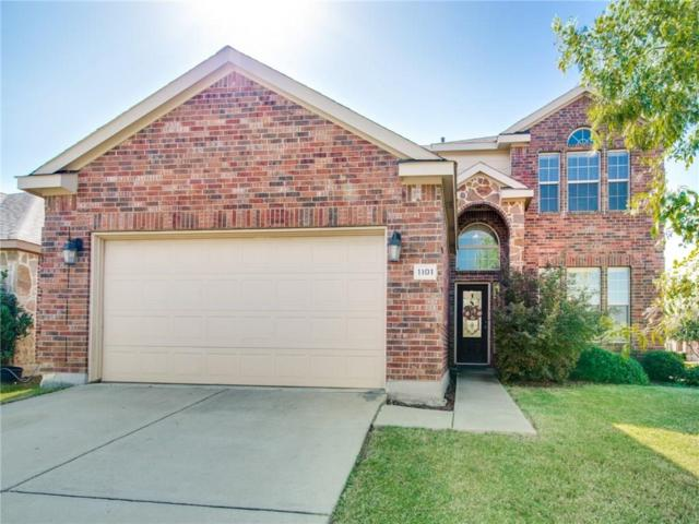 1101 Bexar Avenue, Melissa, TX 75454 (MLS #13969340) :: RE/MAX Town & Country