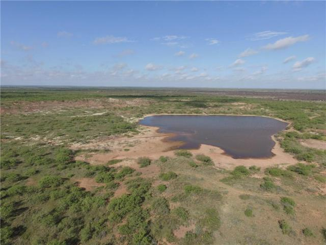 188 Ac Edge Road, Archer City, TX 76351 (MLS #13969570) :: RE/MAX Town & Country