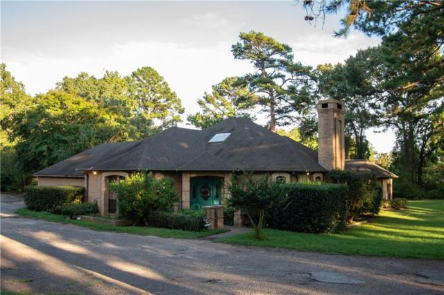 19726 Copperoaks Drive, Tyler, TX 75703 (MLS #13969781) :: RE/MAX Town & Country